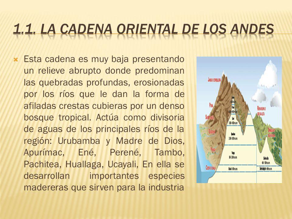 1.1. LA CADENA ORIENTAL DE LOS ANDES