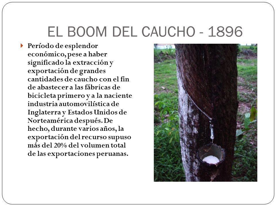 EL BOOM DEL CAUCHO - 1896