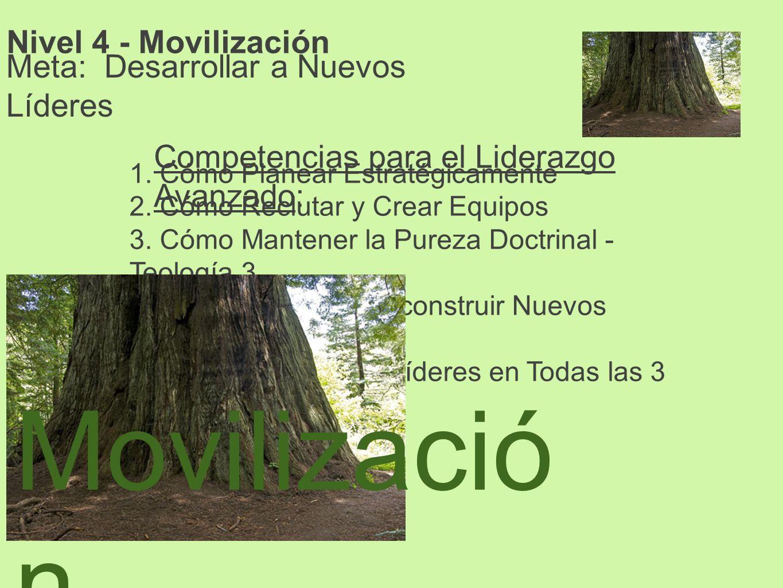 Movilización Nivel 4 - Movilización Meta: Desarrollar a Nuevos Líderes