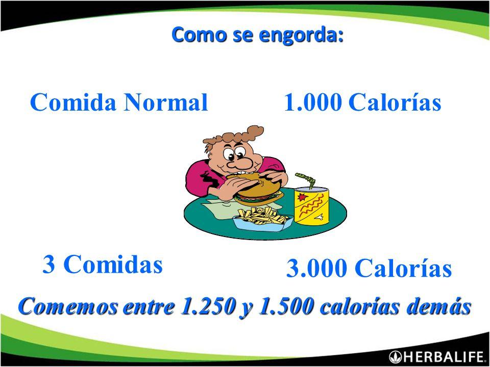 Comemos entre 1.250 y 1.500 calorías demás