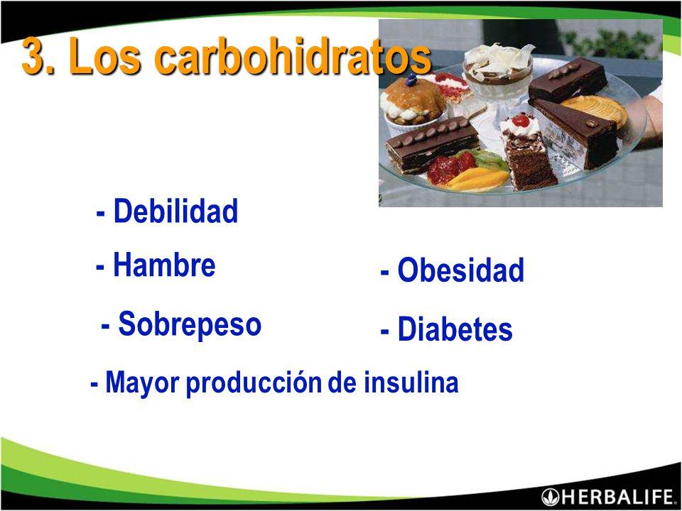 3. Los carbohidratos - Debilidad - Hambre - Obesidad - Sobrepeso