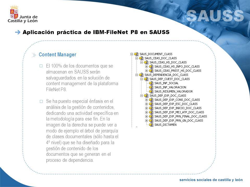 Aplicación práctica de IBM-FileNet P8 en SAUSS