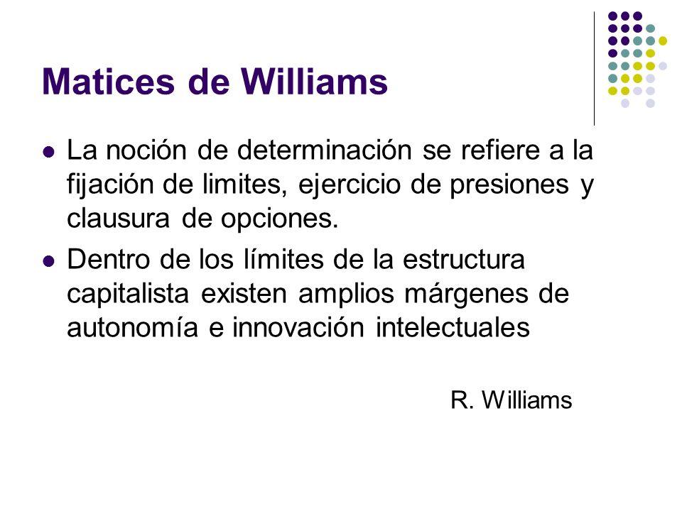 Matices de Williams La noción de determinación se refiere a la fijación de limites, ejercicio de presiones y clausura de opciones.