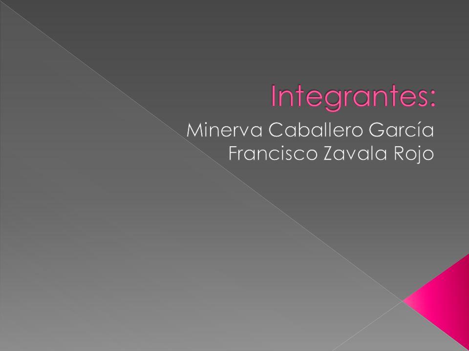 Minerva Caballero García Francisco Zavala Rojo