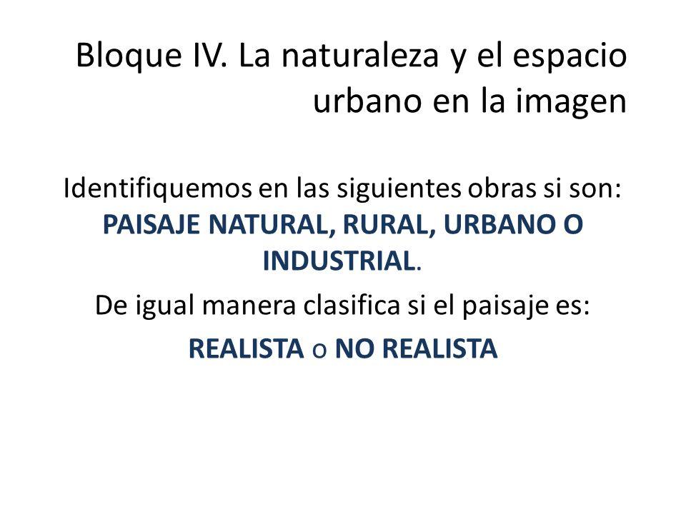 Bloque IV. La naturaleza y el espacio urbano en la imagen