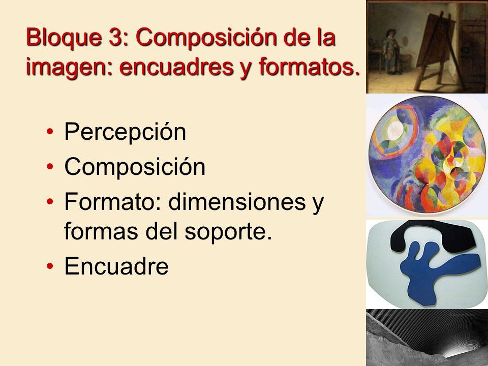 Bloque 3: Composición de la imagen: encuadres y formatos.