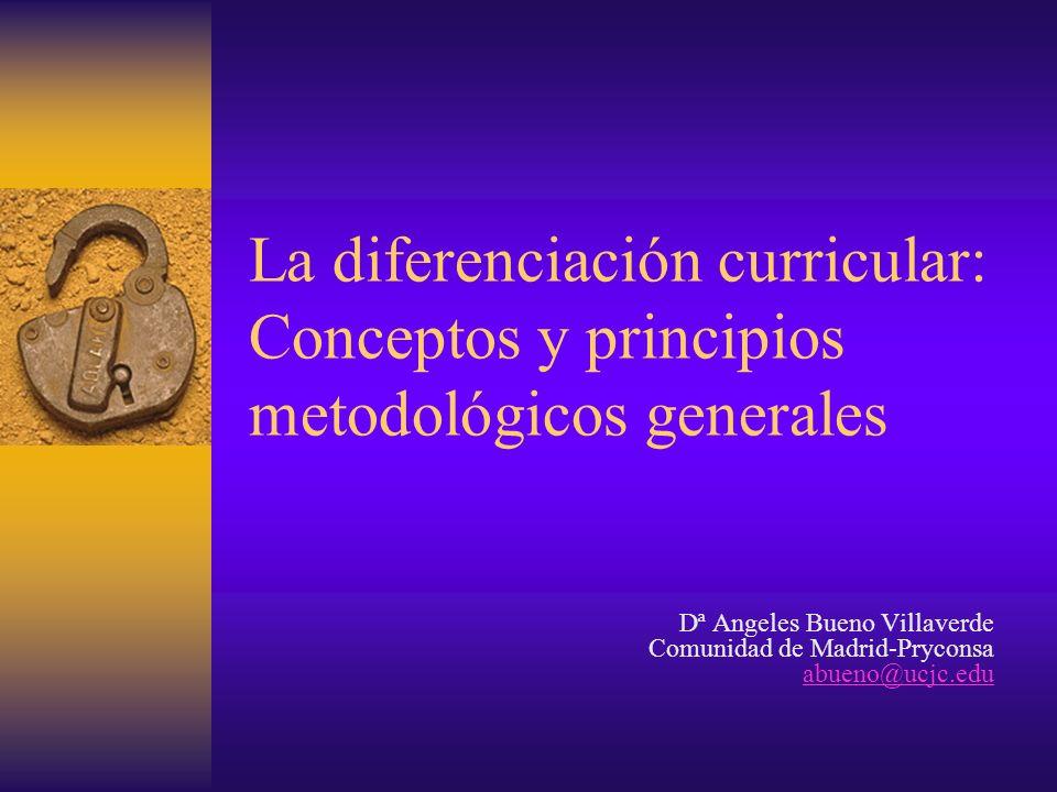 La diferenciación curricular: Conceptos y principios metodológicos generales