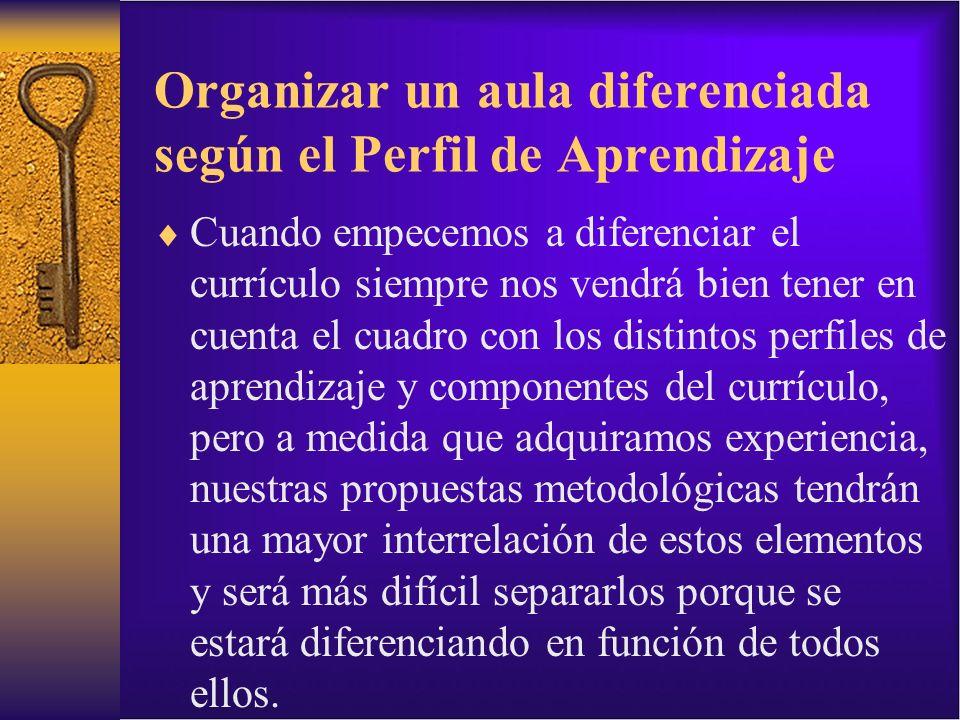 Organizar un aula diferenciada según el Perfil de Aprendizaje