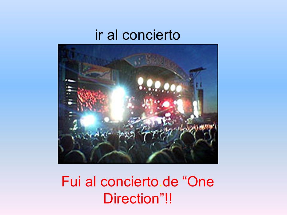 Fui al concierto.de One Direction !!