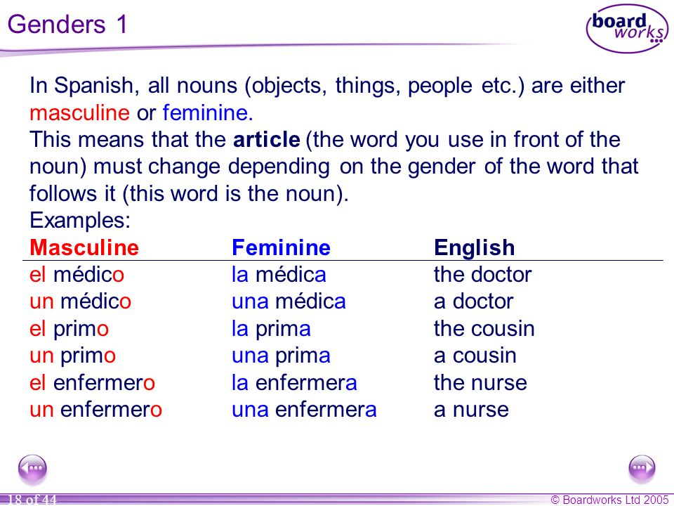 Genders 1 In Spanish, all nouns (objects, things, people etc.) are either masculine or feminine...