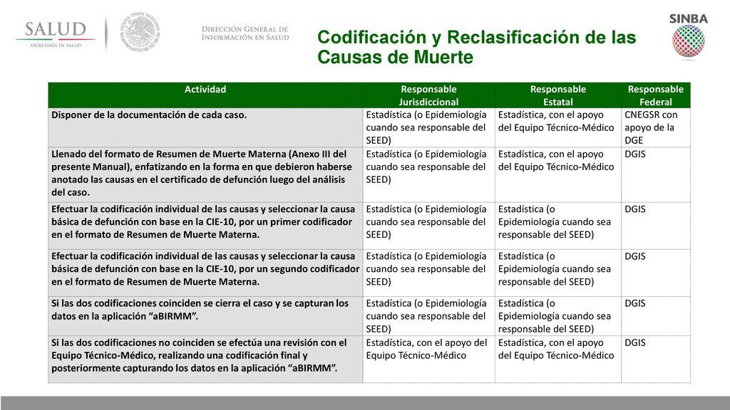 Excepcional Codificación De La Salud Modelo - Anatomía de Las ...