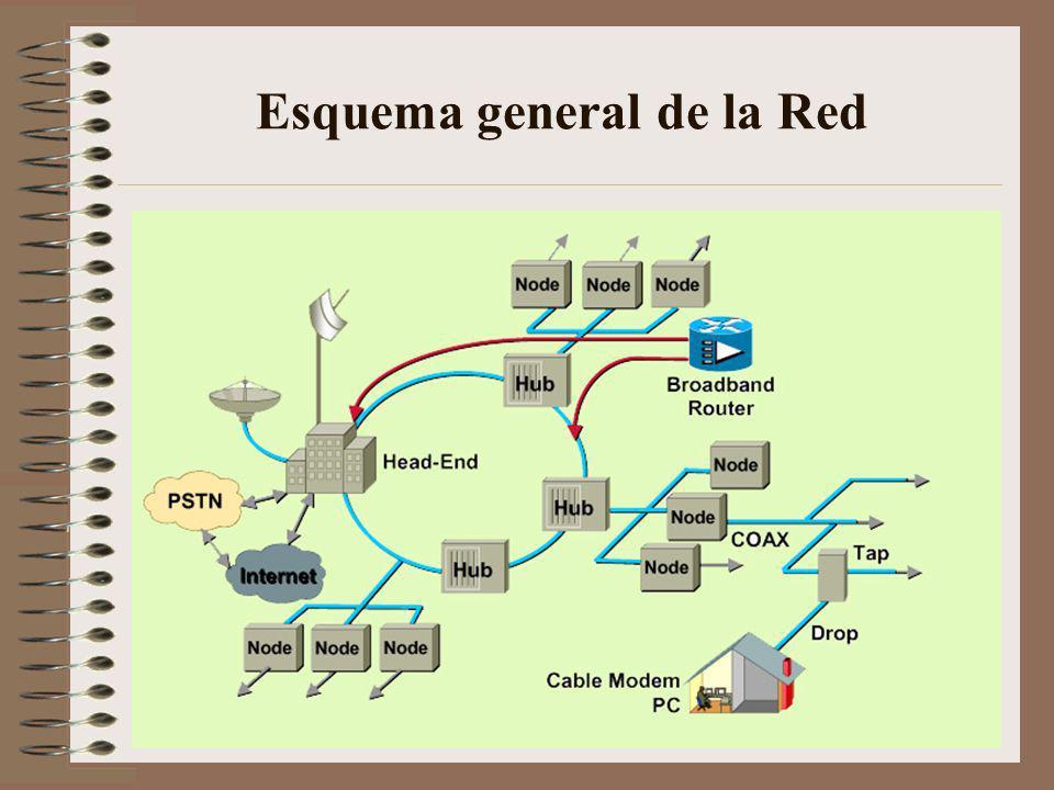 Esquema general de la Red