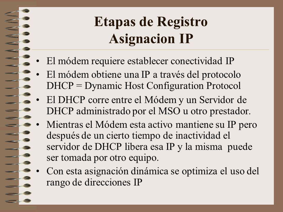 Etapas de Registro Asignacion IP
