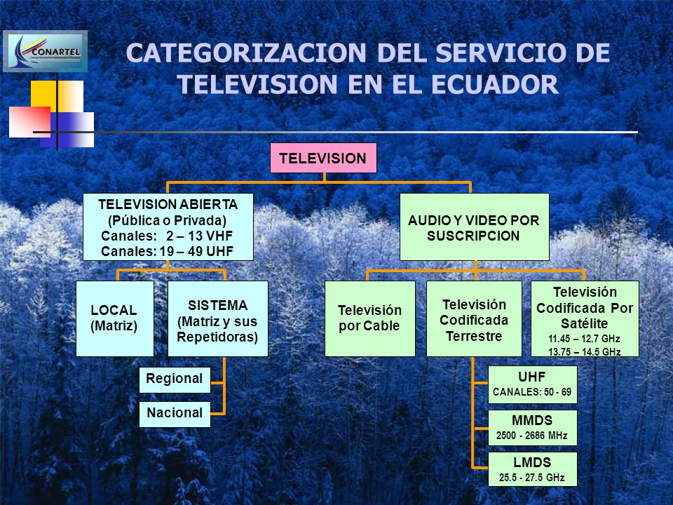CATEGORIZACION DEL SERVICIO DE TELEVISION EN EL ECUADOR