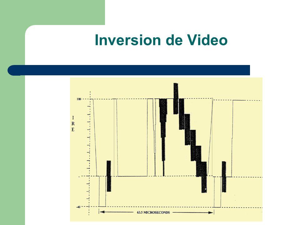 Inversion de Video