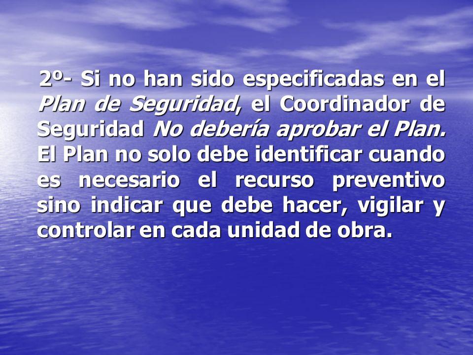 2º- Si no han sido especificadas en el Plan de Seguridad, el Coordinador de Seguridad No debería aprobar el Plan.