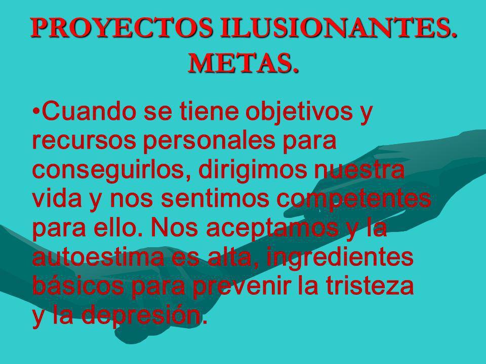 PROYECTOS ILUSIONANTES. METAS.