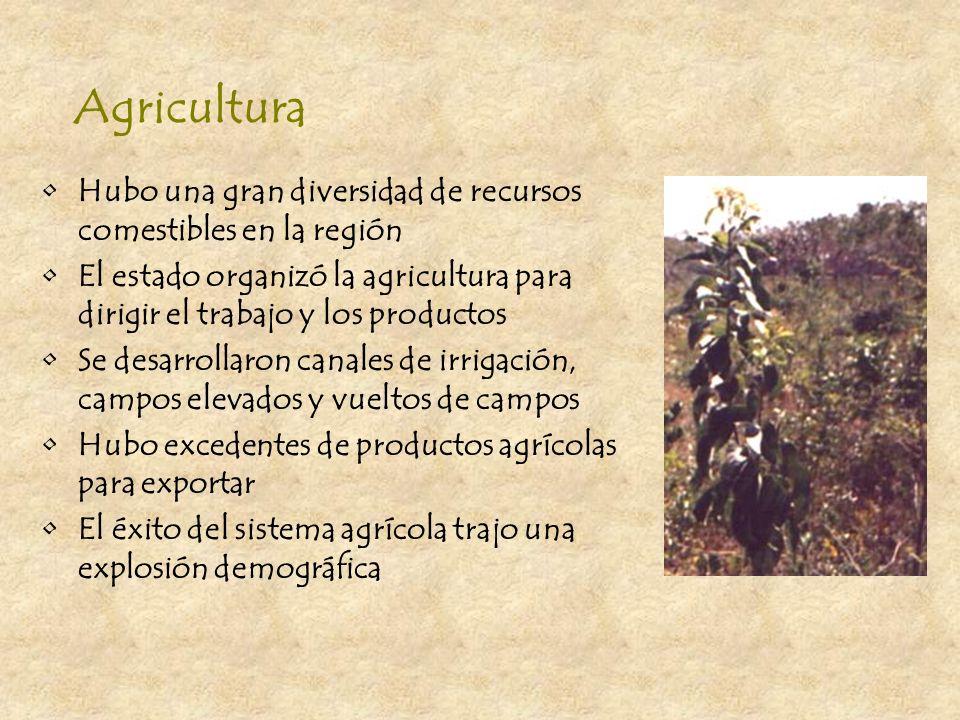 AgriculturaHubo una gran diversidad de recursos comestibles en la región. El estado organizó la agricultura para dirigir el trabajo y los productos.