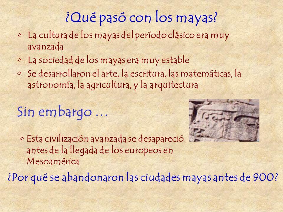 ¿Qué pasó con los mayas Sin embargo …