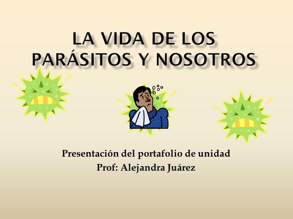 La vida de los parásitos y nosotros