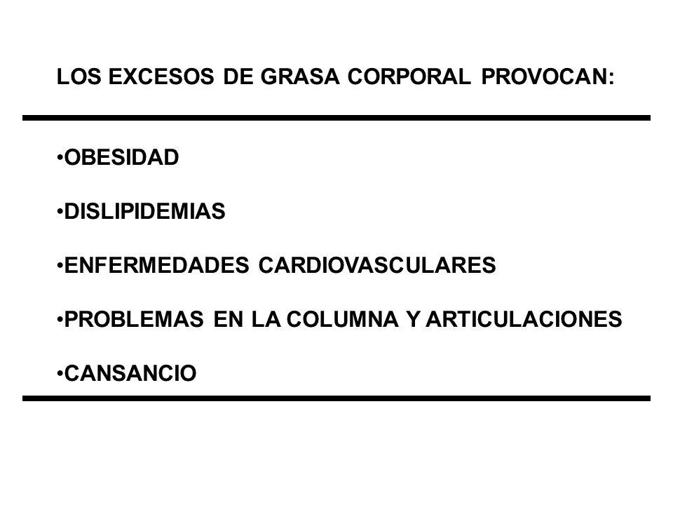 LOS EXCESOS DE GRASA CORPORAL PROVOCAN: