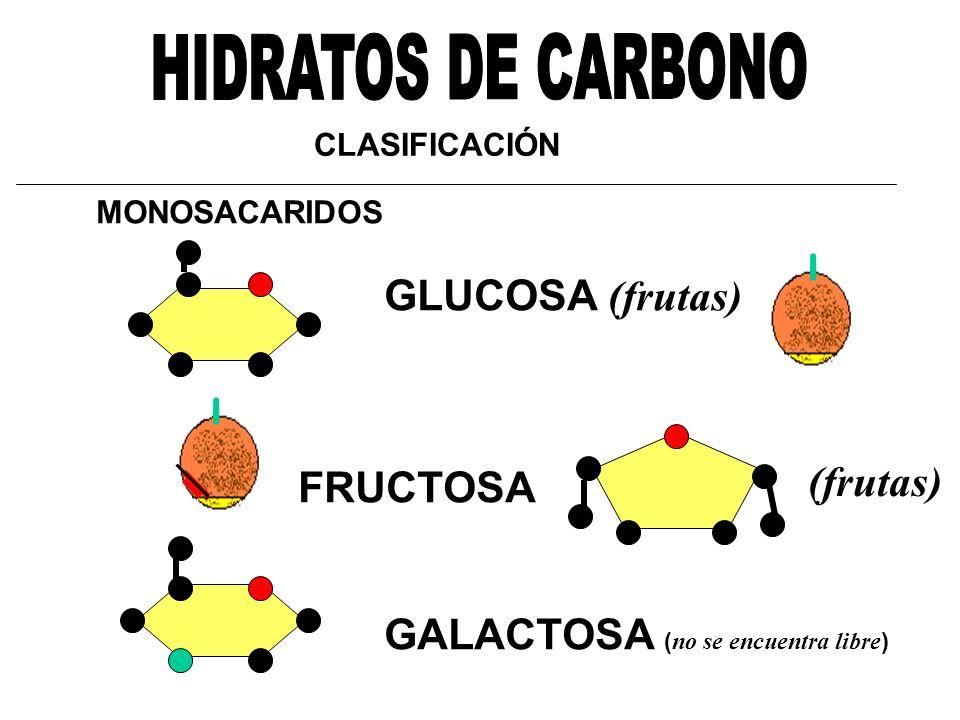HIDRATOS DE CARBONO (frutas) FRUCTOSA