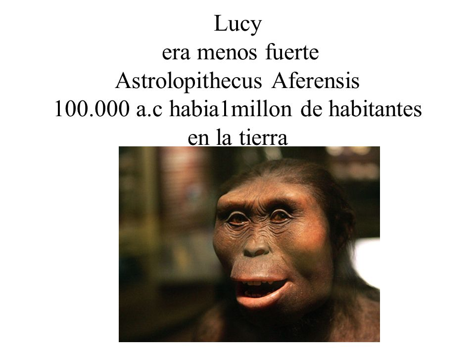 Lucy era menos fuerte Astrolopithecus Aferensis 100. 000 a