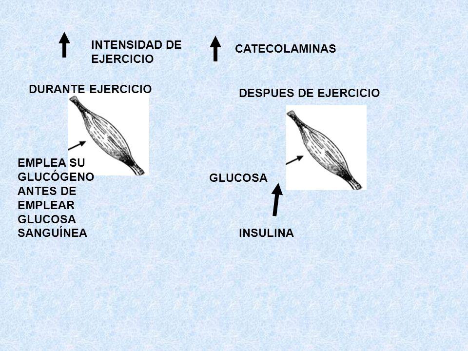 INTENSIDAD DE EJERCICIO