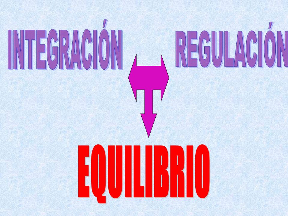 INTEGRACIÓN REGULACIÓN EQUILIBRIO