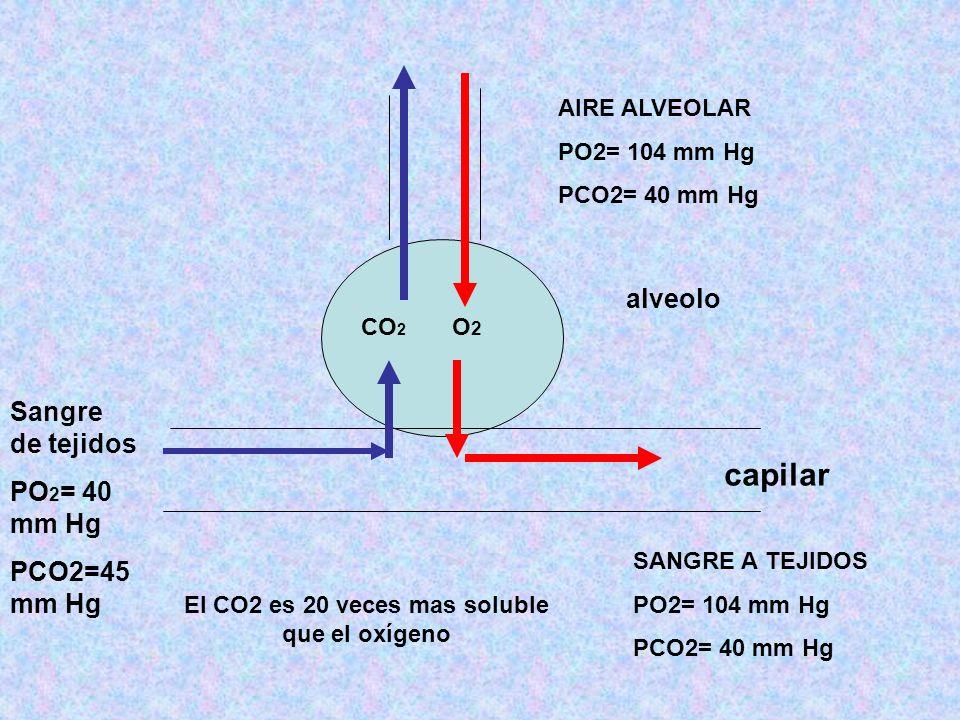 El CO2 es 20 veces mas soluble que el oxígeno