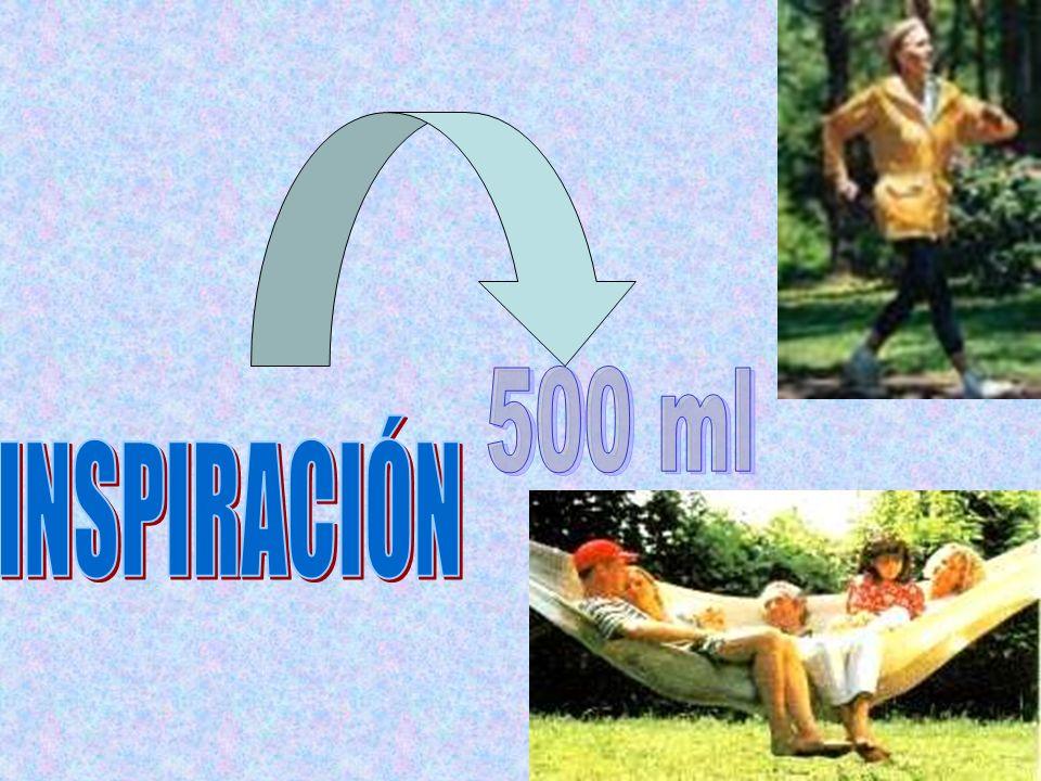 500 ml INSPIRACIÓN