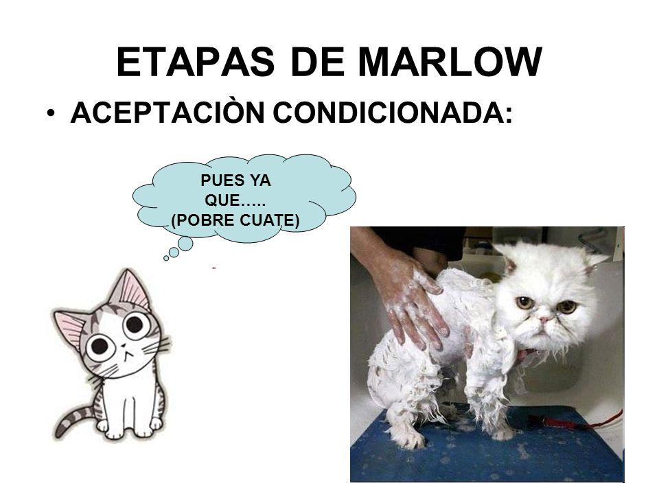 ETAPAS DE MARLOW ACEPTACIÒN CONDICIONADA: PUES YA QUE….. (POBRE CUATE)