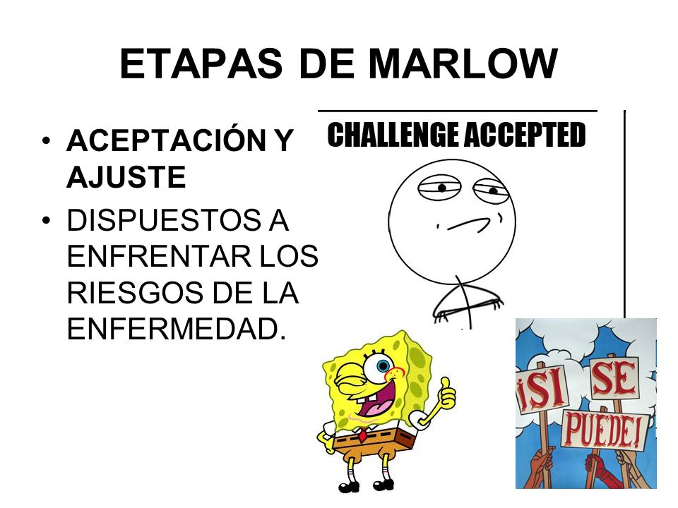 ETAPAS DE MARLOW ACEPTACIÓN Y AJUSTE