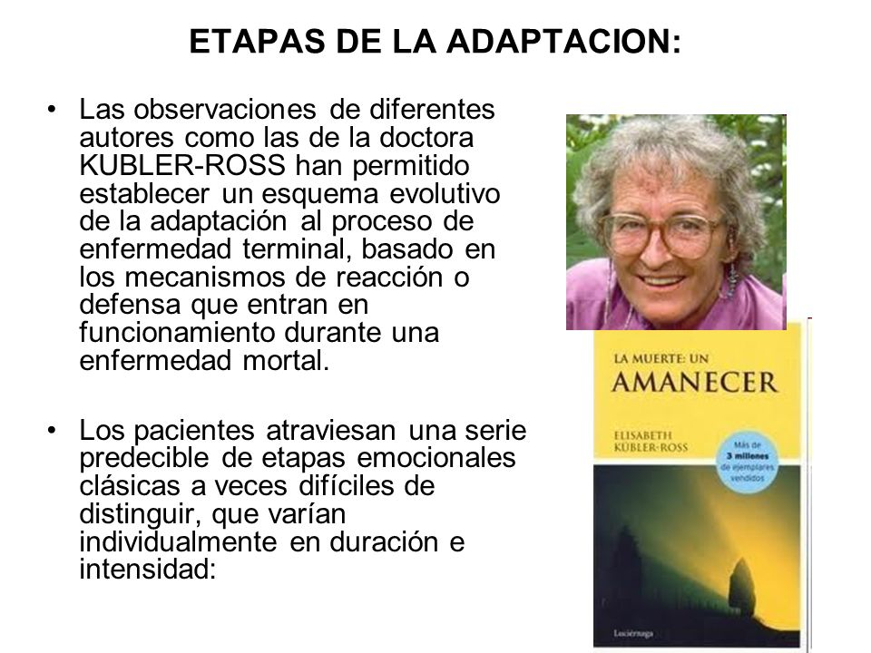 ETAPAS DE LA ADAPTACION: