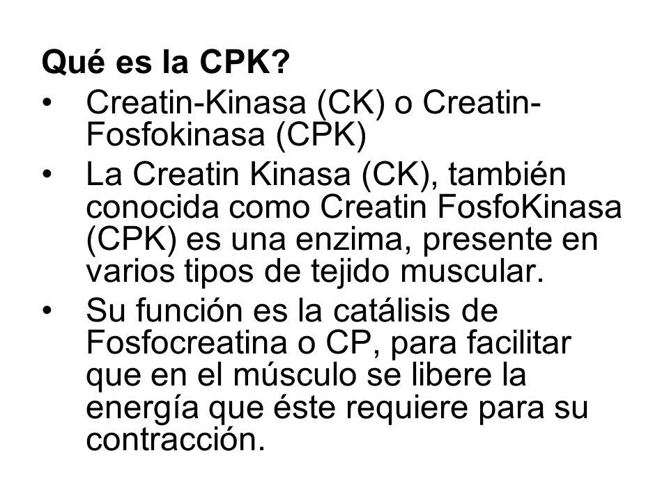 Qué es la CPK Creatin-Kinasa (CK) o Creatin-Fosfokinasa (CPK)