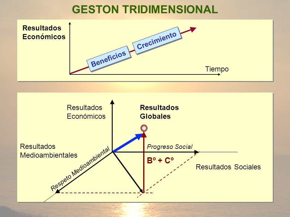 GESTON TRIDIMENSIONAL