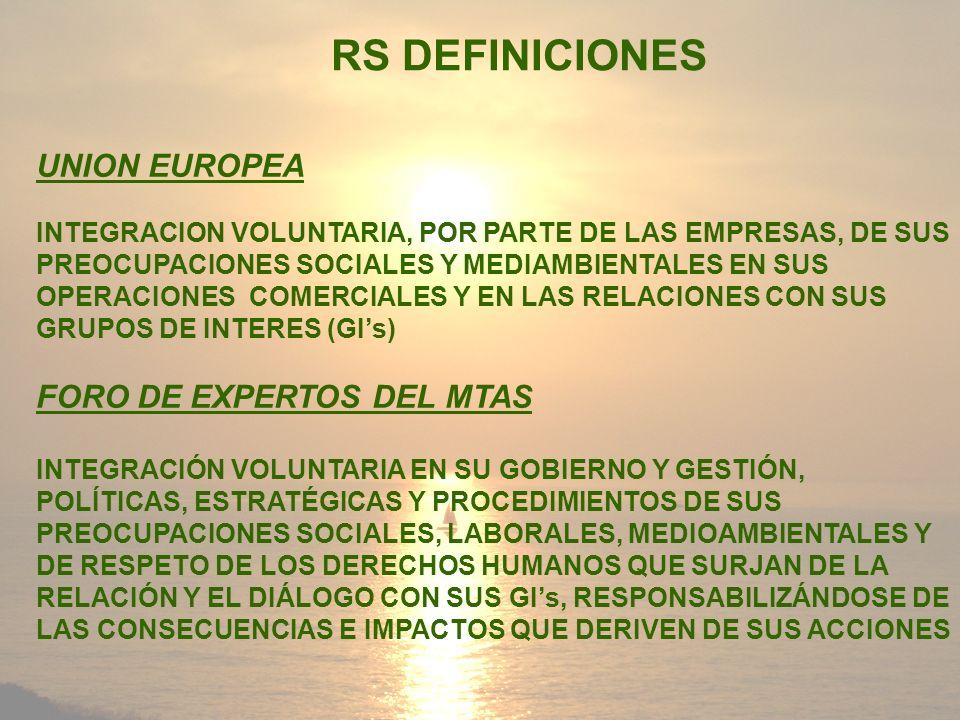 RS DEFINICIONES UNION EUROPEA FORO DE EXPERTOS DEL MTAS