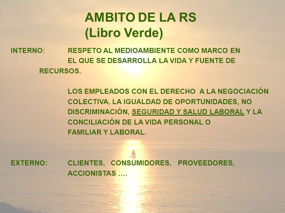 AMBITO DE LA RS (Libro Verde)