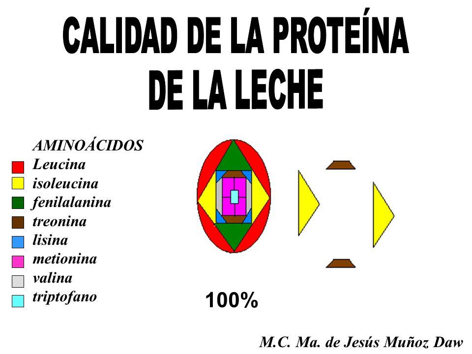 CALIDAD DE LA PROTEÍNA DE LA LECHE 100% AMINOÁCIDOS Leucina isoleucina