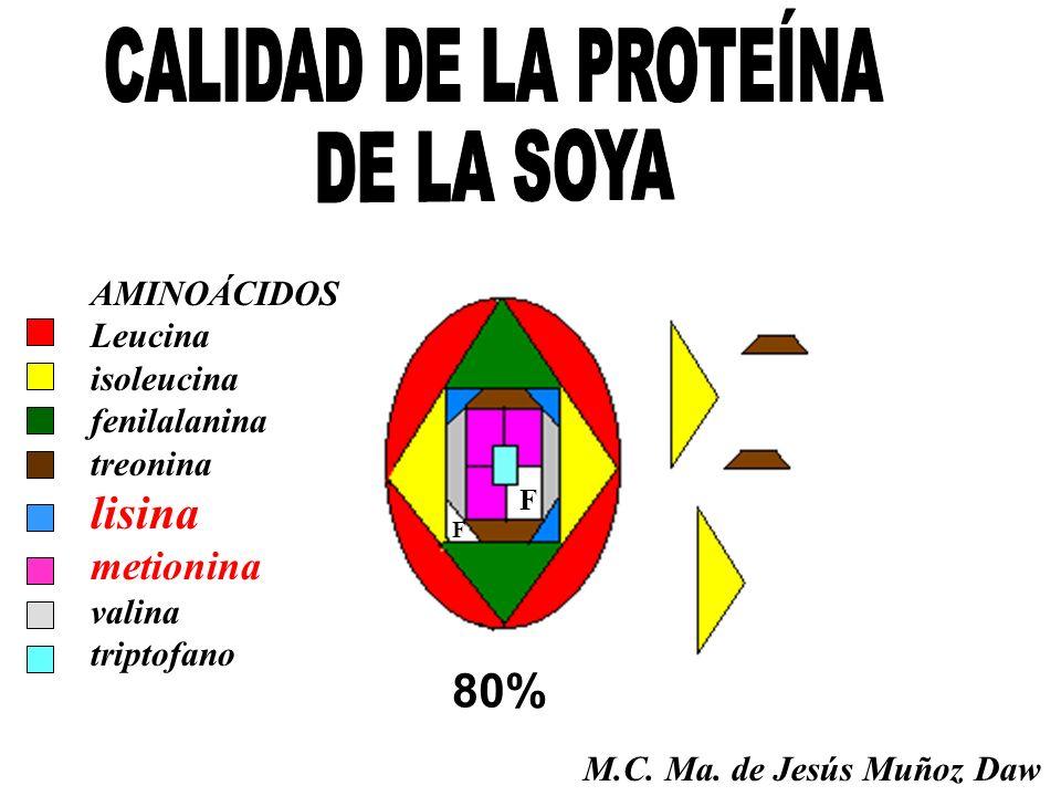 CALIDAD DE LA PROTEÍNA DE LA SOYA lisina 80% metionina AMINOÁCIDOS