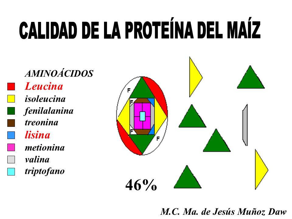 CALIDAD DE LA PROTEÍNA DEL MAÍZ