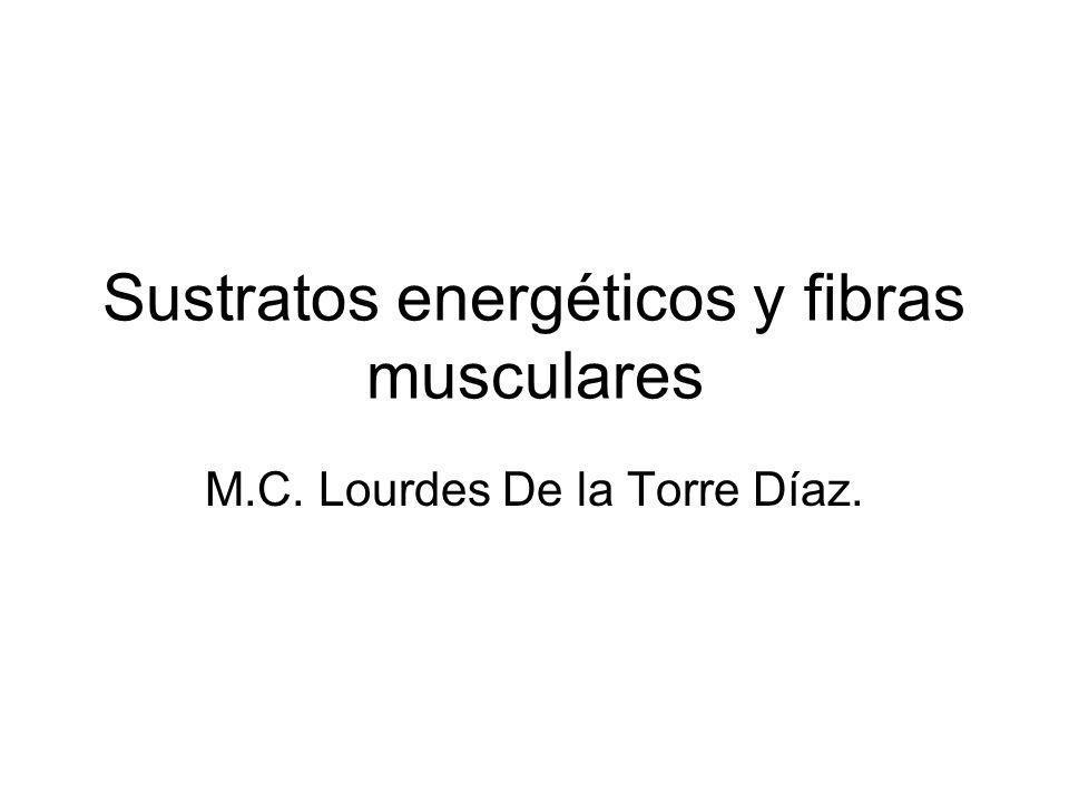 Sustratos energéticos y fibras musculares