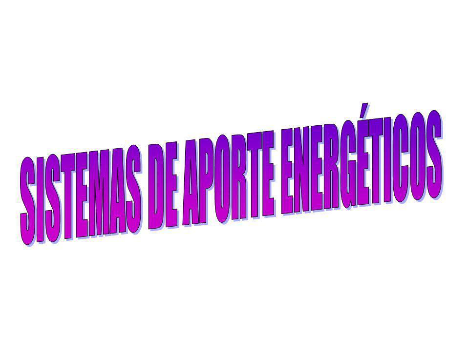 SISTEMAS DE APORTE ENERGÉTICOS