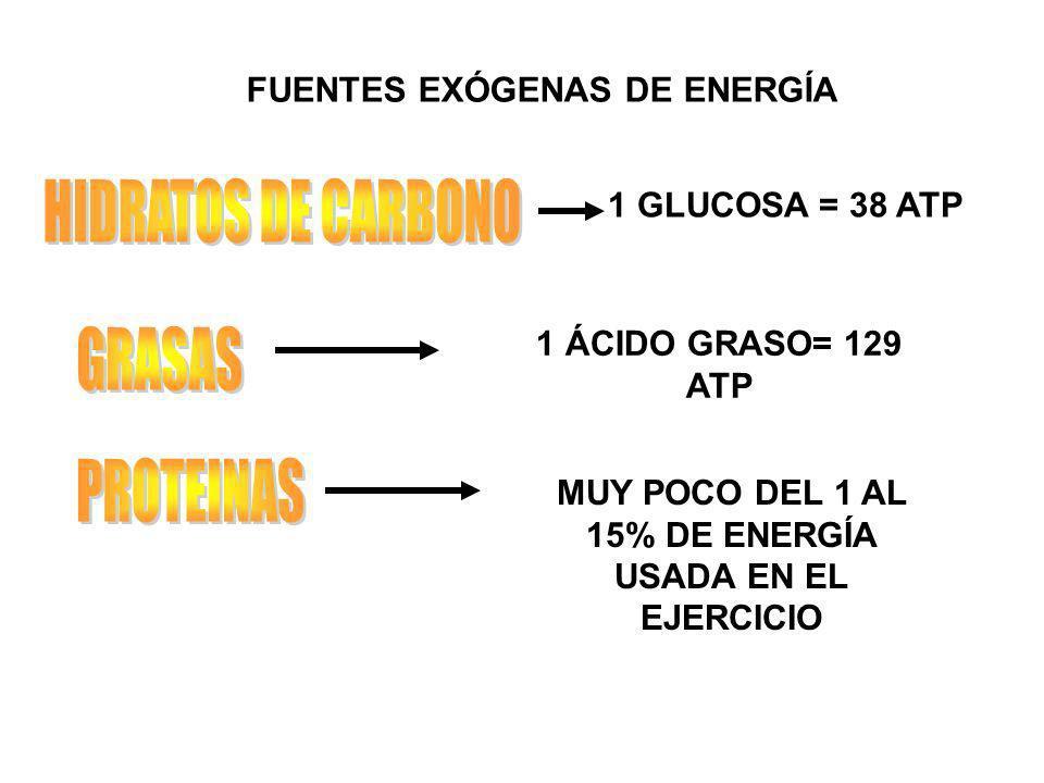 HIDRATOS DE CARBONO GRASAS PROTEINAS FUENTES EXÓGENAS DE ENERGÍA