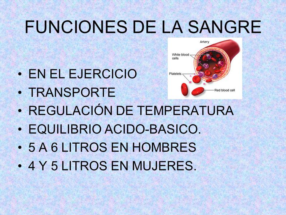 FUNCIONES DE LA SANGRE EN EL EJERCICIO TRANSPORTE