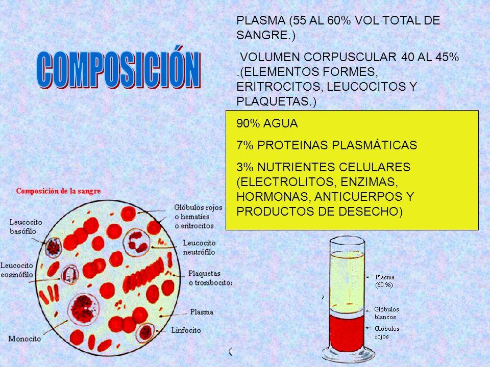 COMPOSICIÓN PLASMA (55 AL 60% VOL TOTAL DE SANGRE.)