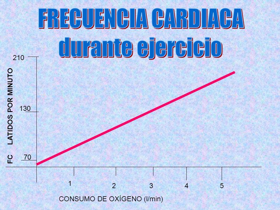 FRECUENCIA CARDIACA durante ejercicio 210 FC LATIDOS POR MINUTO 130 70