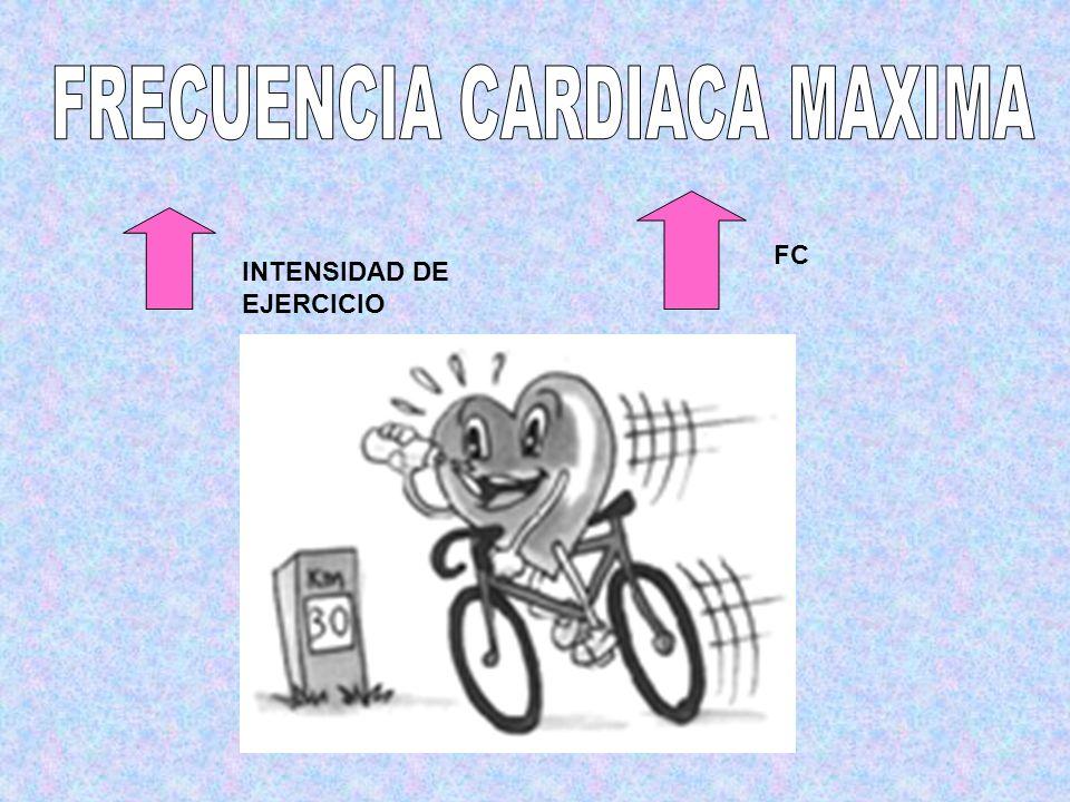 FRECUENCIA CARDIACA MAXIMA
