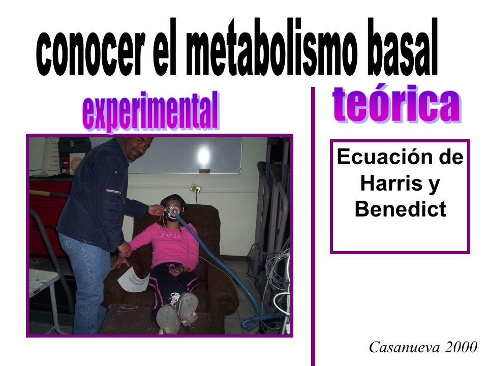 conocer el metabolismo basal