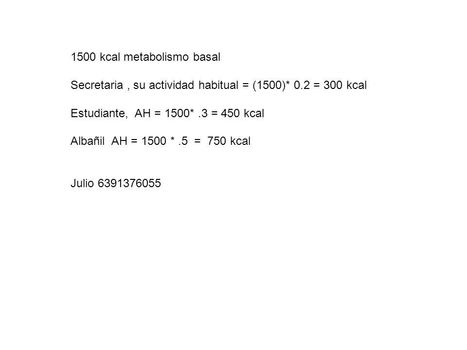 1500 kcal metabolismo basal